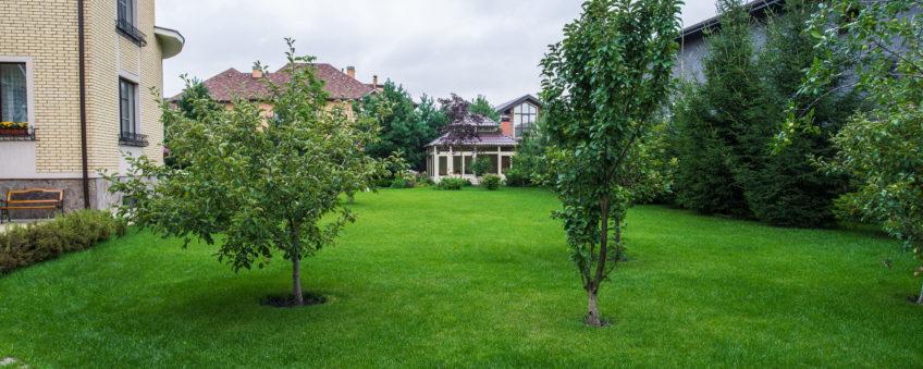 Ландшафтный дизайн бизнес-класса: озеленение