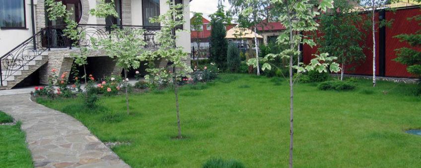 озеленение участка, газон, деревья, дорожки, цветы