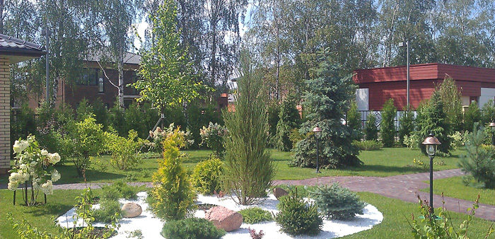 Озеленение в коттеджном поселке Крекшино: высадка деревьев