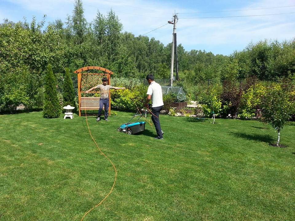 стрижка рулонного газона на загородном участке
