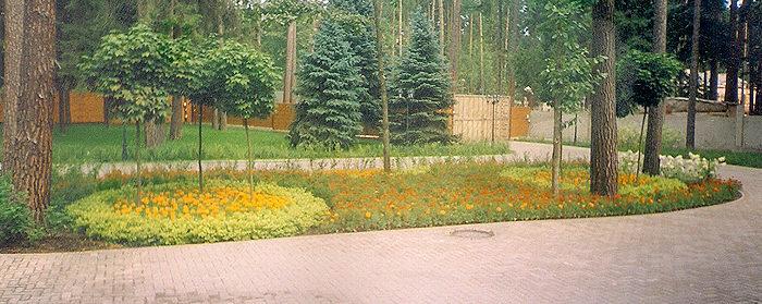 озеленение парка: высадка крупномеров