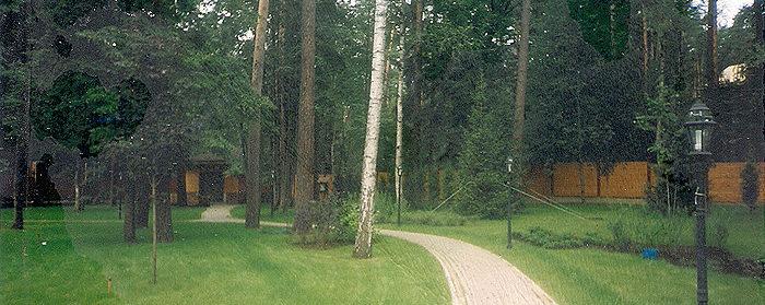 озеленение парка: дорожки, крупномеры