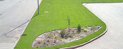 озеленение участка предприятия
