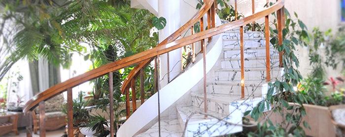 озеленение зимнего сада: лестница