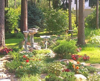 озеленение участка: цветы