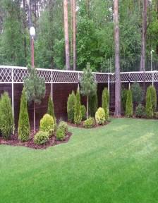 сосны на дачном участке, газон, крупномеры
