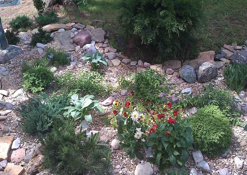 ландшафтный дизайн 25 соток: декоративное озеленение