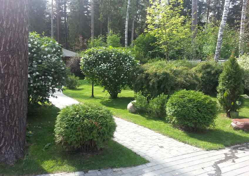 Ландшафтный дизайн заказать в москве