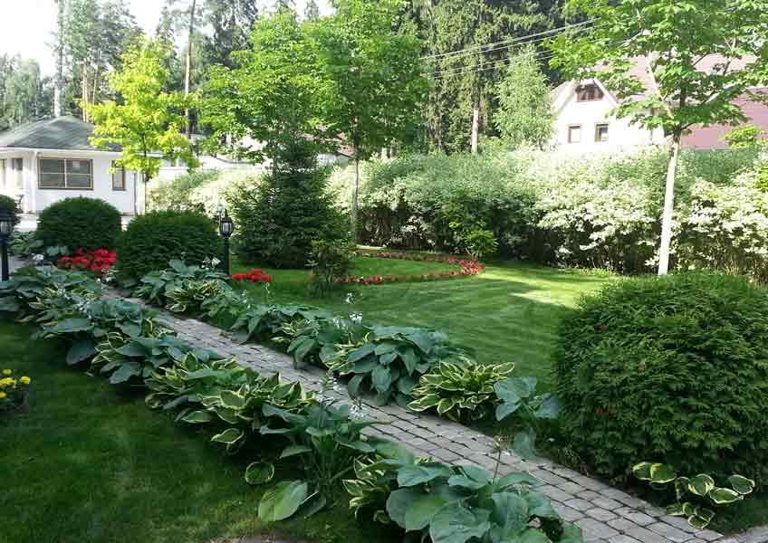 газон и кустарники в ландшафтном дизайне загородного дома