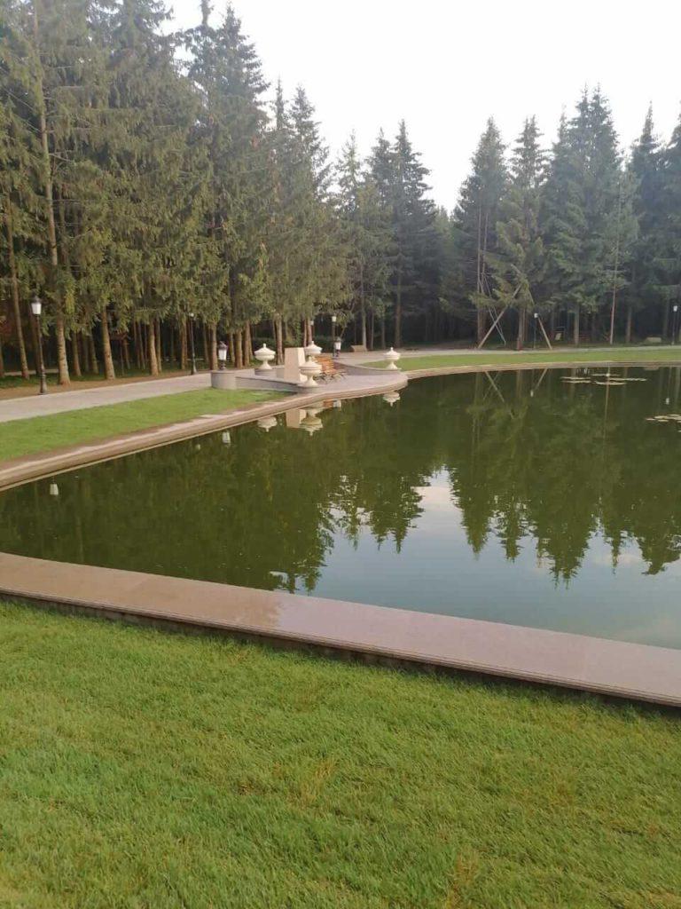 посадка дерьевьев крупномеров вокруг озера компания Русский парк