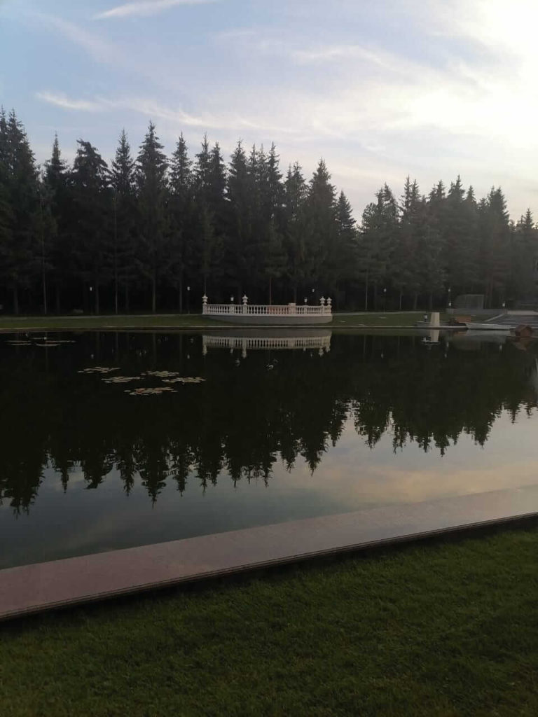 ели крупномеры в ландшафтонм дизайне компании Русский парк