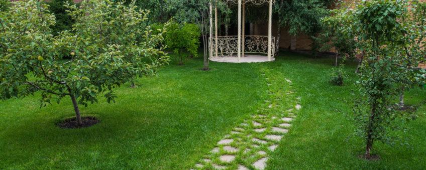 малые архитектурные формы, газон и дорожка