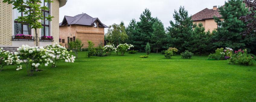 Ландшафтный дизайн бизнес-класса: укладка газона