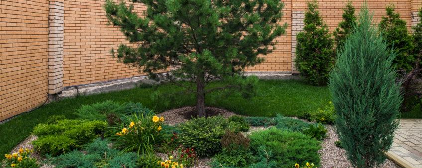 Ландшафтный дизайн бизнес-класса: цветы, деревья
