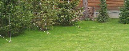 Озеленение в поселке 20/71: газон, высадка крупномеров