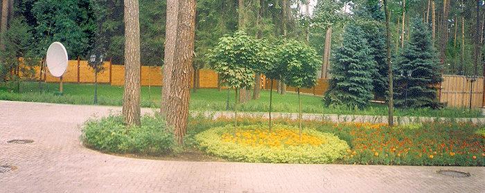 озеленение парка: цветы, деревья