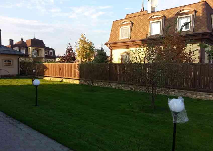 озеленение участка 20 соток: газон