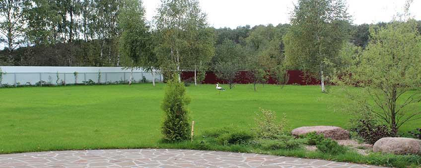 ландшафтный дизайн усадьбы: газон