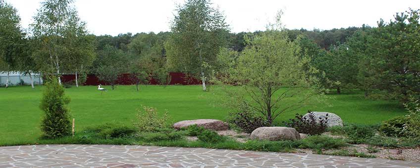 ландшафтный дизайн усадьбы: газон, посадка деревьев