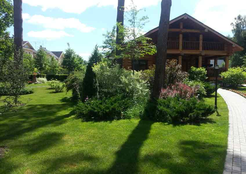 ландшафтный дизайн загородного дома: газон и кустарники