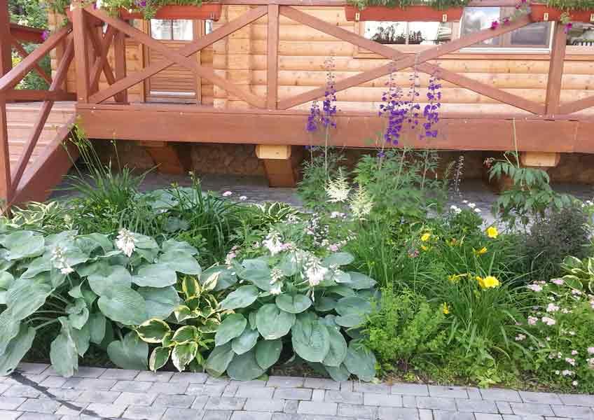 цветы в ландшафтном дизайне загородного дома