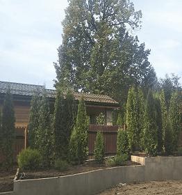 ландшафтный дизайн участка дома 18 соток